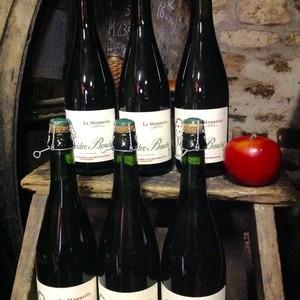 Carton de 6 bouteilles de cidre 75cl | Cidre traditionnel de type bocage Normand