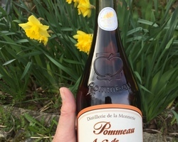 Pommeau de Normandie bouteille 70cl-en