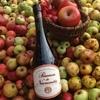 Pommeau de Normandie bouteille 70cl
